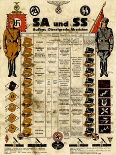 SA and SS uniform rank and insignia