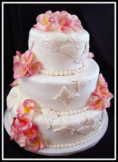 Butterfly cake and plumeria