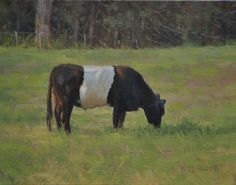 Oil The Galloway Cow, Paintings, Animals, Animales, Paint, Animaux, Painting Art, Painting, Animais