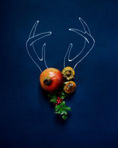 http://www.etsy.com/shop/kariherer    www.etsy.com/... #etsy #antlers #botanical #flowers #christmas #holidayprints @kariherer   Holiday Antlers No. 4182. $30.00, via Etsy.