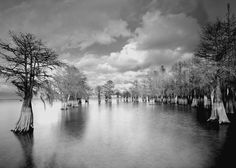 Lake Marion #6 by Paul Shatz reminds me growing up on the lake, need this for my dining room