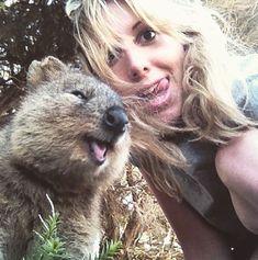 自分撮りに笑顔で写り込んでくる「クアッカワラビー」が可愛すぎる18枚   COROBUZZ