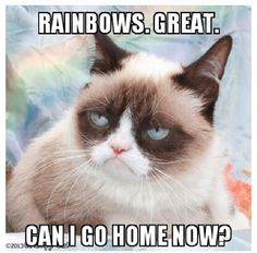 Rainbows, great. Can I go home now? No. Don't insult the rainbows. No.