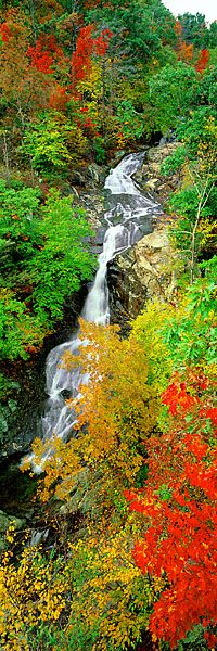 White Oak Falls, Virginia