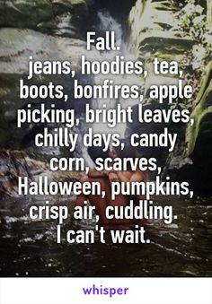 Fall.  jeans, hoodies, tea, boots, bonfires, apple picking, bright leaves, chilly days, candy corn, scarves, Halloween, pumpkins, crisp air, cuddling.  I can't wait.