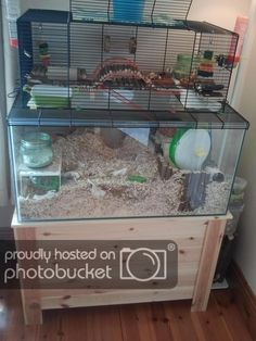 My old gerbil set-up. Hamster Tank, Hamster Diy Cage, Hamster Life, Hamster Habitat, Baby Hamster, Hamster House, Hamster Stuff, Pet Stuff, Gerbil Toys