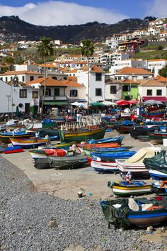 Camara de Lobos  #camaradelobos #madeira #insel #outdoor #wandern #reisen #travel #travelblogger #blog #city #portugal #hafen #boot #boat #fishing #europe #draussen #city #village