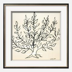 Matisse—Le Buisson