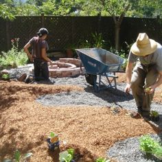 Sheet mulching to turn lawn into garden