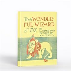 It comes from the UK but, I'd love this for my kindle fire. The Wonderful Wizard of Oz Kindle Fire Cover - Bookish