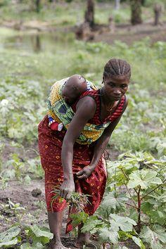 Crossing Village gardening collective...sierra leone