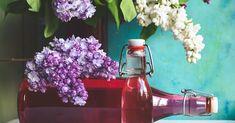 Rezept für lieblich duftenden und herrlich schmeckenden Fliedersirup ohne Zitronensäure - So schmeckt der Frühling