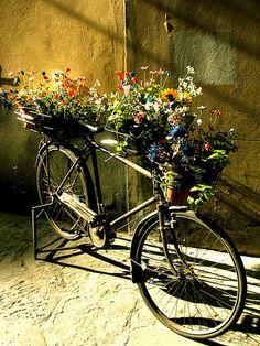 .    ★ ❥    #vélo #bicycle  #bicicletas #cykel #fahrrad #rothar   ❥  ★