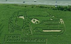 Part of an ingenious new ad campaign from the Osnabrück Agency, this clever agency hired a team to hack a hectares of cornfield into an image of the new Mini Kiwi. New Mini Countryman, Mini Clubman, Cooper Countryman, Guerrilla Advertising, Guerilla Marketing, New Mini Cooper, Mini Lifestyle, Green Marketing, Yes Man