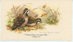 VINTAGE BOB WHITE QUAIL BIRDS AUTUMN LEAVES SCRIPTURE VERSE CARD ART PRINT in Collectibles, Paper, Other Paper Collectibles | eBay