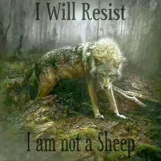 (wolf)--i will resist...i am not a sheep