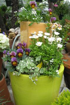 Container gardening. Don't be afraid to add containers within containers.