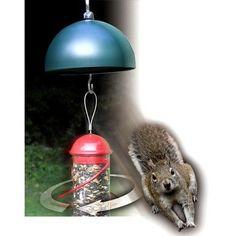 Songbird Essentials Twirl-A-Squirrel Bird Feeder