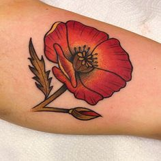 California Poppy Tattoo By Allie G