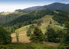 ...Beskydy 3... by ~eugi3 on deviantART European Countries, Eastern Europe, Pathways, Czech Republic, Poland, Mountain, Deviantart, Country, Water