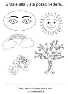 I cinque sensi (le schede) - Fantavolando Snoopy, Character, Grimm, Lab, Google, Winter Time, Five Senses Preschool, School, Spring