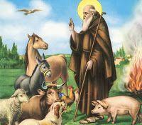 Caffè Letterari: Grande Benedizione degli animali e dei campi a S.A...