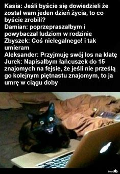 Hahaha Hahaha, Polish Memes, Funny Mems, Texts, Jokes, Humor, Ouat Funny Memes, Chistes, Humour