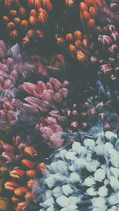 My Lockscreens - Flowers