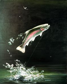 trout jumping out of water - Recherche Google | Endroits à ...