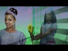 NEW Oromo Music Dibaabee Afaan Dammaa