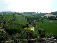 "Parme, Langhirano: Chateau Torrechiara vignes - ""Aux environs de Parme - Le Château de Torrechiara"" by @carnetdescapade"