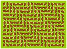 Mind-Bending Illusions and Eye Tricks  These crazy images will leave your head spinning! Join us on a journey into the uncanny world of optical illusions. #fun #funny