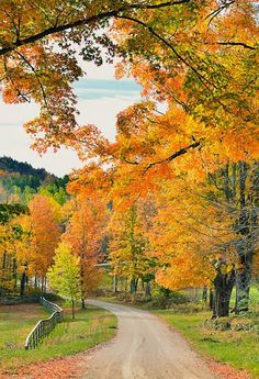 Vermont Fall Foliage 2013 by Fall Pictures, Fall Photos, Pretty Pictures, Beautiful World, Beautiful Places, Landscape Photography, Nature Photography, Autumn Scenes, Belle Photo