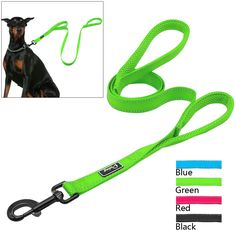 2 Handles Nylon Padded Double Handle Leash For Greater Control For Medium Large Dog Dual Padded Handles Protect Dog in Traffic Animal Jewelry, Dog Leash, Dog Accessories, Large Dogs, Cat Toys, Dog Bed, Handle, Personalized Items, Pets