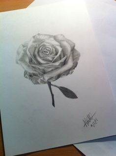 #blackandgrey #rose #tattoo