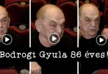 Betöltötte 86. születésnapját egy ország kedvence, Bodrogi Gyula Movie Posters, Movies, Films, Film Poster, Popcorn Posters, Cinema, Film, Film Posters, Billboard
