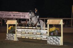 Twilight Jumpers is a new, super fun event at Great Meadow (near Middleburg in The Plains, VA). Show jumping, tailgating, socializing and more...very cool.