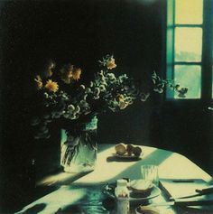 No es muy conocido que Tarkovsky, cuyas películas parecen estar compuestas a veces por un montaje de fotografías...