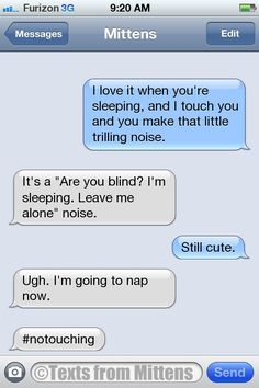 Texts from Mittens - NEW Daily Texts from Mittens: The No-Touching...