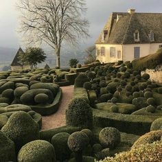 D E V I N E gardens of Marqueyssac in France | via @lukeedwardhall and @jamespanteri * * * #topiary…""