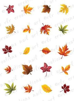Details about Fall Leaves Waterslide /Water Transfer Nail Decals/Nail Art - -