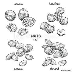 Healthy Food, Healthy Recipes, Food Illustrations, Nutella, Hand Drawn, Almond, How To Draw Hands, Doodles, Tattoo