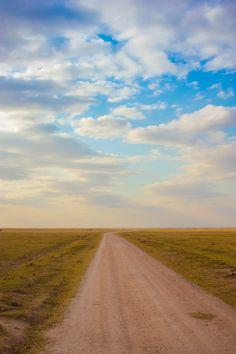 Amboseli National Park - Kenya (by Nacho Coca)