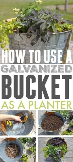 Using galvanized containers as planters is a clever and economical way to bring a bit of farmhouse style charm to your garden! Here are some tips for successful container gardening using galvanized buckets troughs and tubs! - Planters - Ideas of Planters Galvanized Planters, Herb Planters, Outdoor Planters, Concrete Planters, Flower Planters, Garden Pots, Rustic Planters, Planter Ideas, Planter Boxes