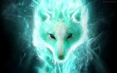 Spirit Wolves | White spirit wolf Wallpapers, Hintergründe | 1920x1200 | ID:553440