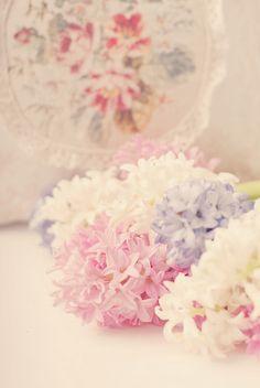 sweet flowers soft tone