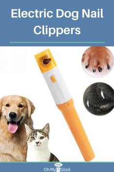 dog care,dog grooming tips,dog ideas,dog nail trimming,dog ear cleaner Dog Nail File, Clipping Dog Nails, Dog Nail Clippers, Cat Nails, Trim Nails, Nails At Home, Dog Modeling, Dog Supplies, Dog Care