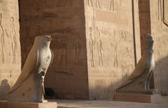 The Horus statue guarding the entrance of Edfu Temple. Visit the below link for more information  http://www.travel2egypt.org/tours/cairo-abu-simble-aswan-luxor/marvelous-abu-simbel-8422_83/