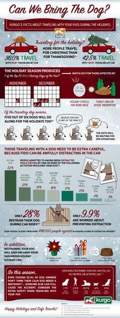 Dog Holiday Travel Infographic