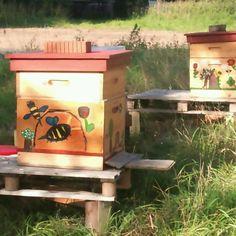 Kreative Bienenkästen.